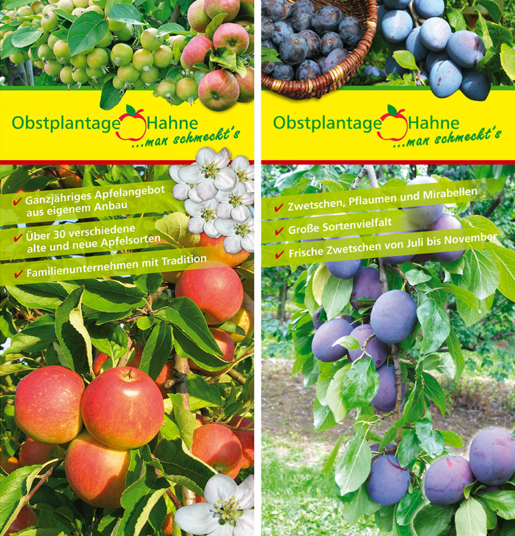 obstplantage_hahne2