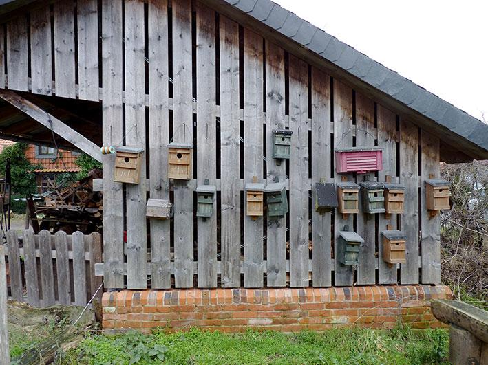 Vogelnester Biolandhof