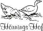 logo geflügelhof hörning